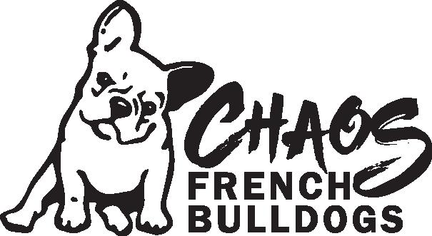 Chaos French Bulldogs